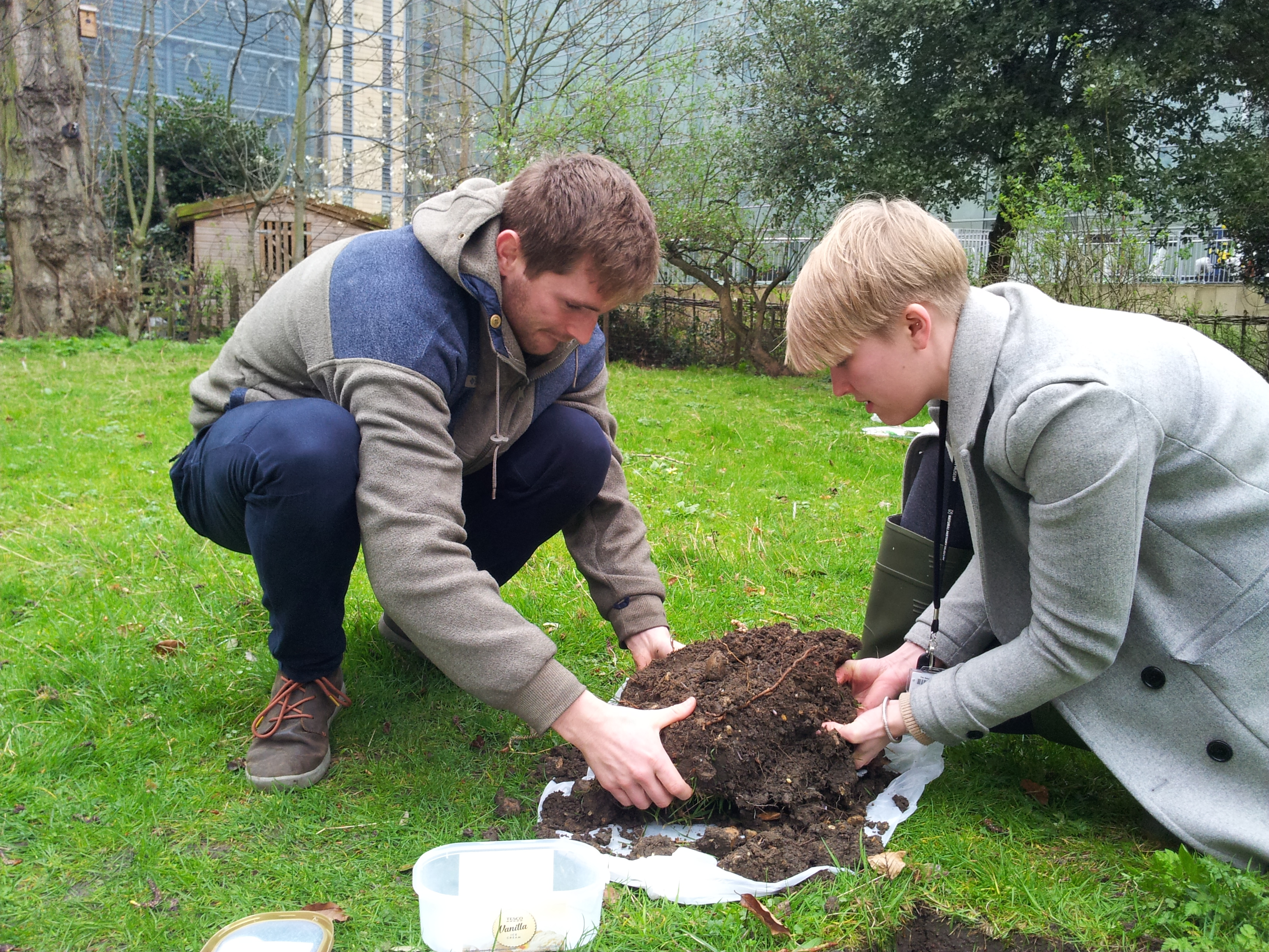 Vicki Shennan taking part in Earthworm Watch in The Natural History Museum's Wildlife Garden