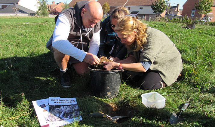 Earthworm watch gardeners conducting the Experimental science survey
