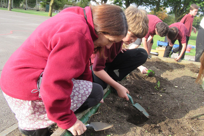 Youth Groups: School children using Earthworm watch as a science project